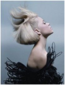 Contemporary Classic Funky Hair Style Winner at NAHA Hairstylist Awards