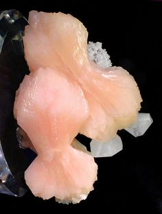 """Two large Stilbite """"bowties"""" with assoc. Calcite crystals which ac-cent the far right edge of the speci-men; the upper most crystal is perfect. Poonah District, Maharash-tra, India. Measures 8cmxy 11.2cm x 5.2cm. Ex. J. Webb Mineral Collection. Price $3850"""