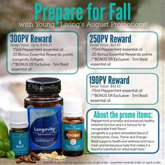 See what the RWEO Team is ordering this month and check out the awesome August Promotional Offers from Young Living | Recipes with Essential Oils