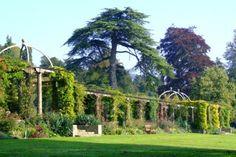 West Dean Gardens Blog