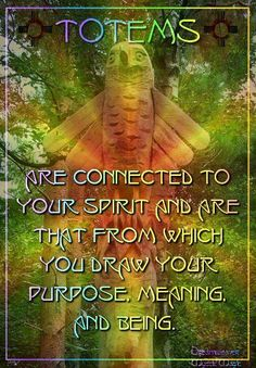 Totems are connected to your spirit and are that from which you draw your purpose, meaning, and being. Spirit Animal Totem, Animal Spirit Guides, Animal Totems, Native American Spirituality, Native American Wisdom, Animal Meanings, Animal Symbolism, Spiritual Animal, Spiritual Power
