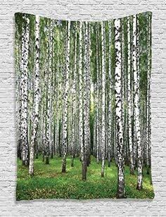 Ambesonne Farm House Decor Collection Autumn Trees in Birch Forest September Time View Picture Bedroom Living Kids Girls Boys Room Dorm Accessories Wall Hanging Tapestry Green Grey >>> Read more  at the image link.