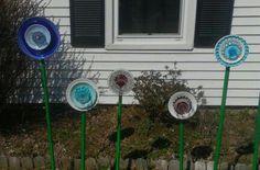 My yard flowers!!