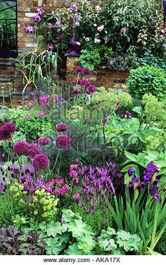 , 58 stunning small cottage garden ideas for backyard landscaping. , 85 Stunning Small Cottage Garden Ideas for Backyard Landscaping Small Cottage Garden Ideas, Garden Cottage, Backyard Cottage, Cozy Cottage, Small Garden Planting Ideas, Very Small Garden Ideas, Small Garden Plans, Family Garden, Garden Living