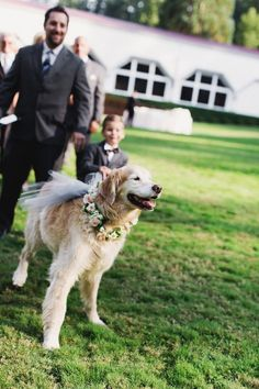 Photographer: Michele M. Waite; Even pets need accessories on the big day!
