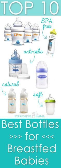Top 10 Best Bottles for Breastfed Babies. Expressing Mama