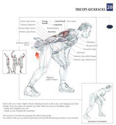 Kickbacks ~ Re-pinned by Crossed Irons Fitness