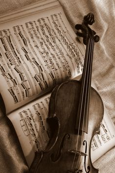 * <3 * Interlude for a Memory Violin, Music Instruments, Photography, Musical Instruments, Fotografie, Photo Shoot, Fotografia, Photograph, Photoshoot