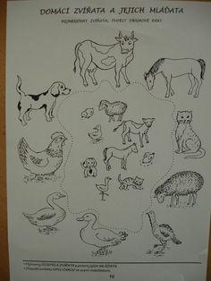 Preschool, Zz, Leto, Psychology, Education, Animales, Psicologia, Preschools, Kid Garden