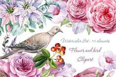 Flower and bird Clipart. Watercolor by Gringoann on @creativemarket