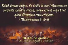 Mujeres que oran Movie Posters, Movies, Gratitude, Pray, Christians, Thanks, Films, Film Poster, Cinema