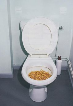 WHO TF PUT FRIES IN THE TOILET LIKE WHATT