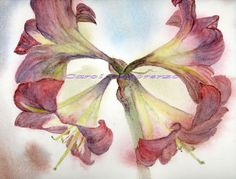 Watercolor Painting Floral Art, Floral Painting, Floral Watercolor, Lily Painting, Stargazer Lilies, Floral Art Print Titled Star Lily by caroldelorenzo on Etsy https://www.etsy.com/listing/41215071/watercolor-painting-floral-art-floral