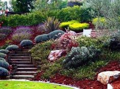 Steep Hill Landscaping, Steep Backyard, Sloped Backyard Landscaping, Sloped Yard, Landscaping Ideas, Landscaping Borders, Mailbox Landscaping, Country Landscaping, Large Backyard