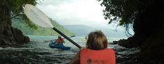 Bountiful Fishing Trips | Playa Nicuesa Rainforest Lodge