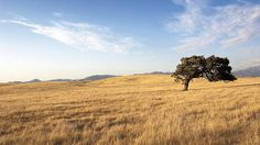 Santa Ynez Valley | Flickr - Photo Sharing!
