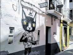 cat graffiti in Fanzara Spain