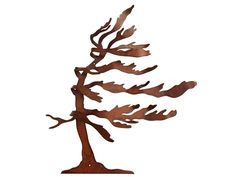 Image result for windswept pine silhouette