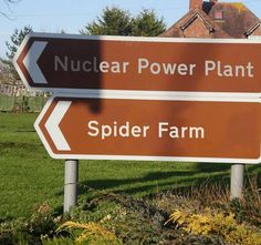 What could possibly go wrong?