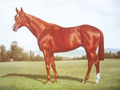 Vintage Horse Print - Meadow Court Print - Derby Horse Print - Thoroughbred Print - Richard Stone Reeves - Signed Vintage Equestrian Art