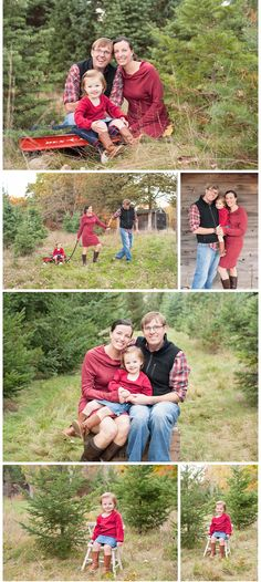 holiday pictures at a christmas tree farm