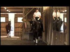 Dressage Teacher Jane Savoie Explains How To Adjust Your Horse's Balance...