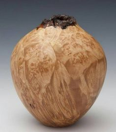 """248 Likes, 2 Comments - Various Artists (@woodturners_worldwide) on Instagram: """"I want you to look at the shape of this hollow form from Sally Ault. They say the perfect shape is…"""""""