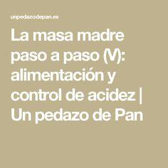La masa madre paso a paso (V): alimentación y control de acidez   Un pedazo de Pan