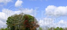 Free Blue Sky Day Royalty Free Stock Photo - 142005