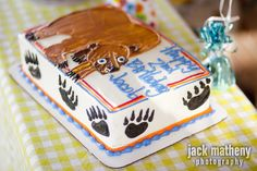 Brown bear party and cake