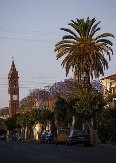 St Joseph's Cathedral by Eric Laffourge (c). #Eritrea #Africa