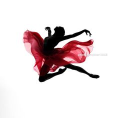 """Instagram의 박귀섭 / BAKi(@1984baki)님: """"2017.KIADA @with.kiada Dancer: Jinho Won @j_jhw #photographerBAKi @1984baki www.a-apollon.com . .…"""""""