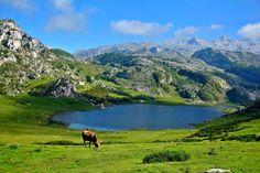 Lagos de Covadonga. Que ver en Asturias