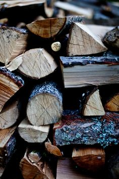 Woodpile at the cottage, Autumn, Winter, Camping Outdoors wooden logs
