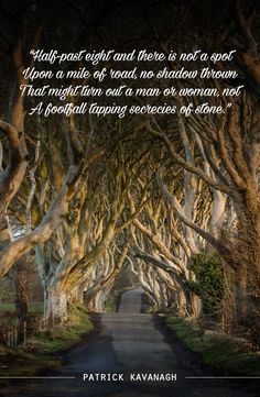 Discover how one of the most iconic Game of Thrones® filming locations is embedded in Northern Ireland. Irish Sayings, Irish Quotes, American Wizarding School, Wonderful Places, Beautiful Places, Ireland Homes, Scotland Castles, Londonderry, Evergreen Trees