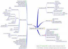 Jak organizovat akci, kurz, seminář osobního rozvoje