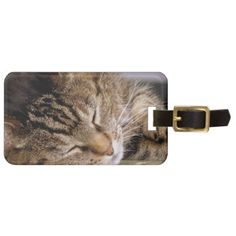 Sweet Dreams Kitty Luggage Tag - travel luggage tags personalize customize your name diy