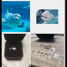 Cutiest Whale Ring ever Sterling silver The cutest Whale ring ever size 6,but will fit 6.5 too The eyes have a little cz stud in them Pairs beautifully with vineyard vines O/s Jewelry Rings