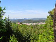 Wasgau News - Aktuelle News aus der Region: Busenberg - Gemeinde