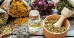 Home Remedies For Dry Mouth - Essential Oils Natural Remedies For Congestion, Herbal Remedies, Healing Herbs, Medicinal Herbs, Natural Medicine, Herbal Medicine, Foot Remedies, Wellness Mama, Natural Beauty Recipes