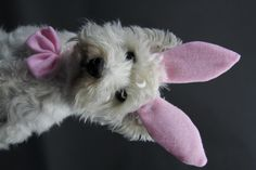 Frohe Ostern, Happy Easter, My Easter - Westie