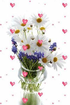 My pleasure Sweet sister friend! Vintage Flowers Wallpaper, Flower Phone Wallpaper, Butterfly Wallpaper, Love Wallpaper, Good Night Gif, Good Morning Gif, Good Morning Flowers, Flowers Gif, Beautiful Rose Flowers