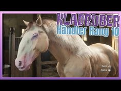 Red Dead Online, Star Stable, Den, Rings, Youtube, Ring, Jewelry Rings, Youtubers, Youtube Movies