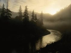 Photographic Print: Smith River Shrouded in Fog Poster by Phil Schermeister : 16x12in