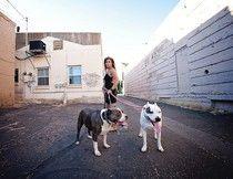 Homeless Dog Walker Finds Redemption In Building A Rescue Shelter