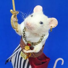 Taxidermy pirate mouse Taxidermy, Pirates, Unique Jewelry, Handmade Gifts, Animals, Vintage, Etsy, Kid Craft Gifts, Animales