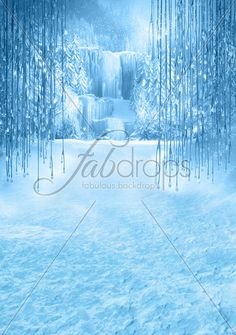 Frozen Enchanted Forest Party Background - Frozen Princess Theme Photoshoot Backdrop - Winter Holiday Pictures (FD5034)