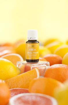 Citrus Fresh is a blend of energizing citrus oils designed to boost creativity and increase clarity of thought. This Young Living blend contains essential oils of Orange, Grapefruit, Mandarin, Tangerine, Lemon and Spearmint. Natural Lifestyle, Healthy Lifestyle Tips, Young Living Oils, Young Living Essential Oils, What Women Want, Citrus Oil, Therapeutic Grade Essential Oils, Health And Nutrition, Get Healthy