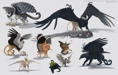 Here are several different variations of griffins. I like to make hybrids of the different kinds of creatures, and such mythical creatures as griffins give a lot of opportunities for fantasy. Mythical Creatures Art, Mythological Creatures, Magical Creatures, Character Inspiration, Character Design, Mystique, Creature Concept, Animal Wallpaper, Dragon Art