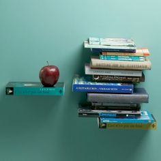 Good stuff for tiny houses: Book Shelf Book